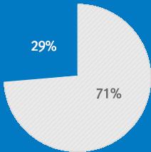 2018년 글로벌 매출비중 29%